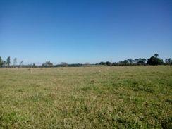 Ranchos -Lotes-Terrenos em Promissão-S.p*condições Especiais !!!